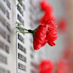 462px-Remebrance_poppy_ww2_section_of_Aust_war_memorial